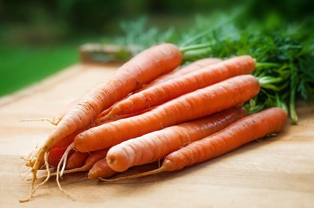 agriculture-carrots