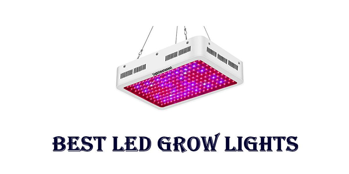 Best-LED-Grow-Lights