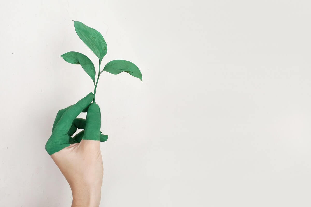 make-an-environmental-difference