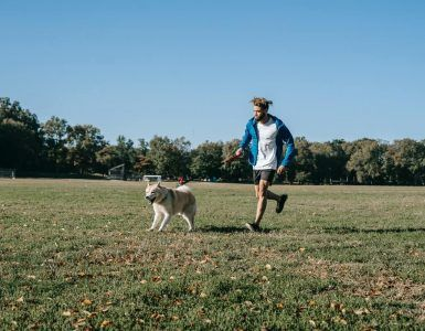 benefits of exercising with your dog